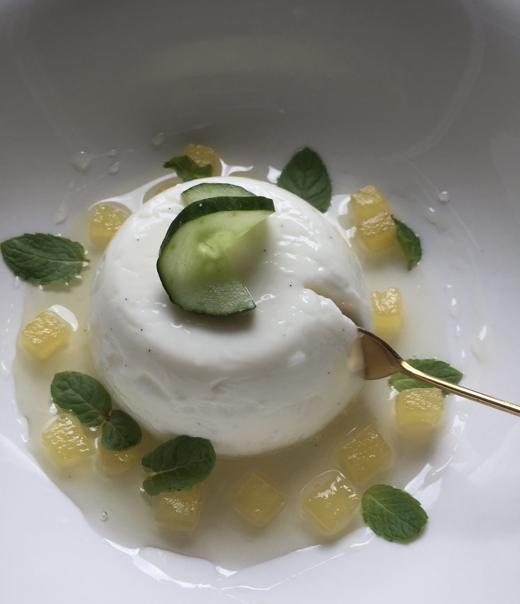Greek Yogurt Panna Cotta with Gin & Tonic Syrup
